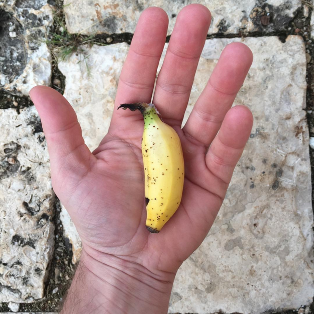 Banana // sursa foto: Instagram