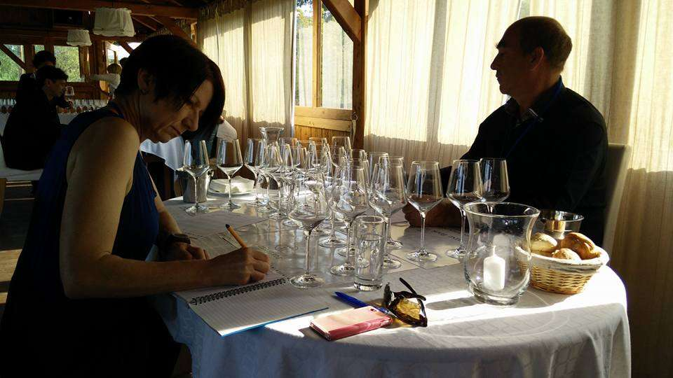 wine book 2