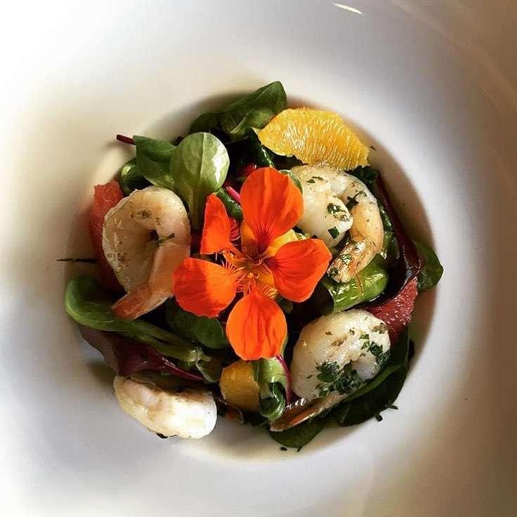 salata form